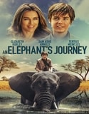 An Elephant's Journey